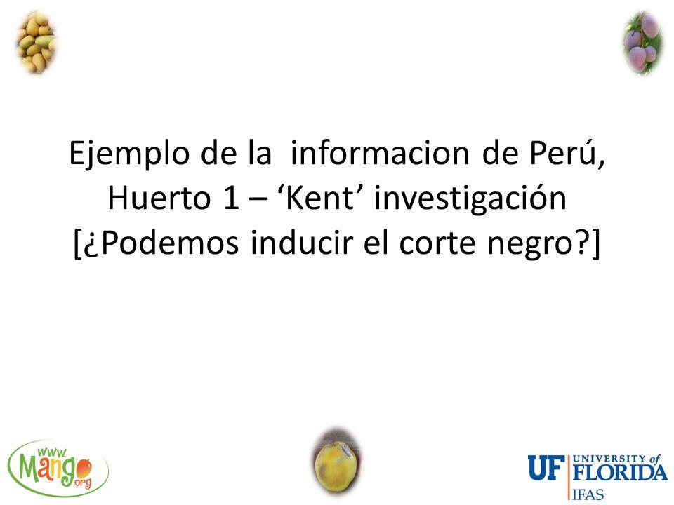 Ejemplo de la informacion de Perú, Huerto 1 – 'Kent' investigación [¿Podemos inducir el corte negro ]